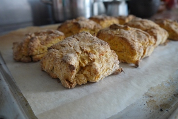 biscuits03