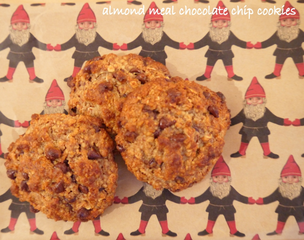 almond meal cookies01